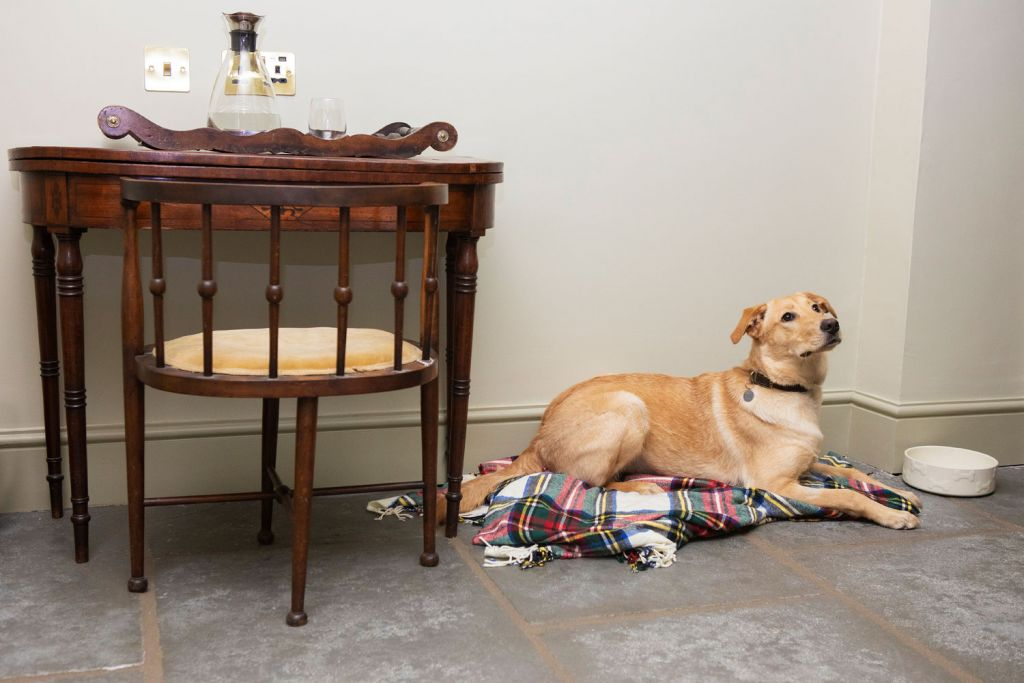 Victorian House Hotel Grasmere Lake District is dog friendly