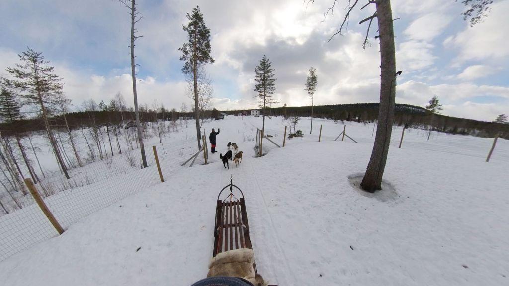 Join Erik Hordijk from Yellow Snow Husky tours