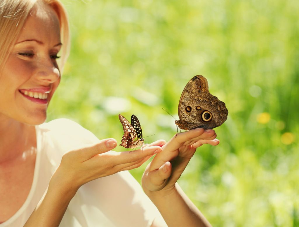 Big Butterfly Count Returns for 2020, and It's Your Duty to Take Part