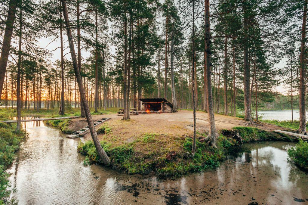 JoogaTaival Forest Yoga