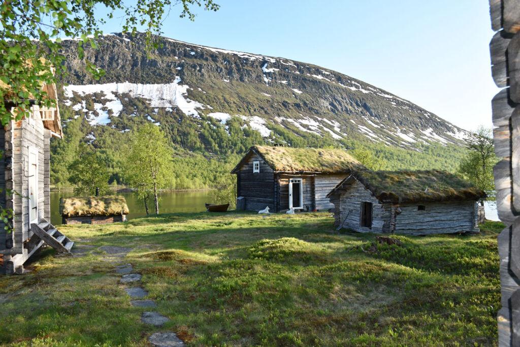 Geunja The Sámi Ecolodge in the summer months