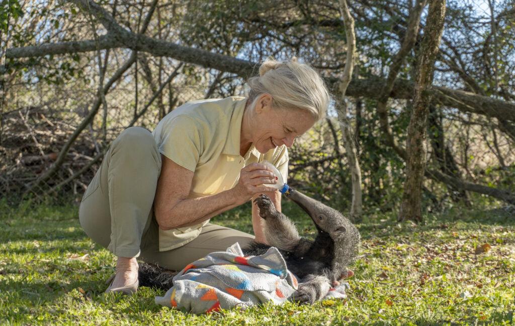 Meet Kristine Tompkins, The Woman Saving the World's Wildlife
