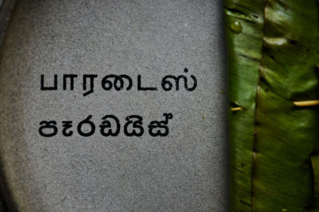 Sri Lankan script on clay plate