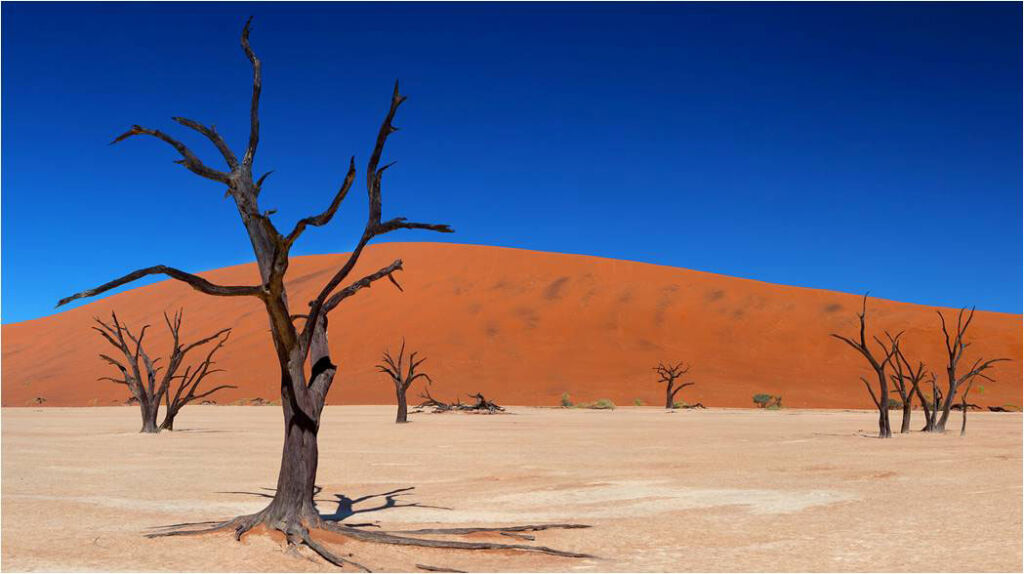 The sand dunes of Sossusvlei in Namibia