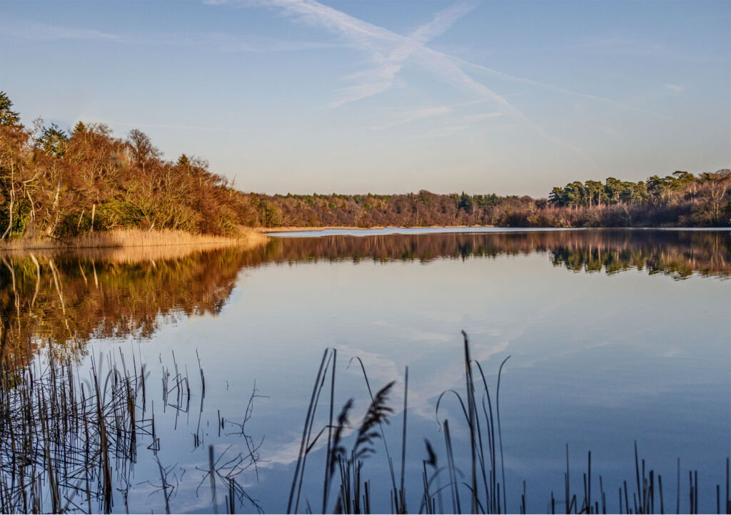Reap The Benefits Of Biophilic Experiences At Fritton Lake