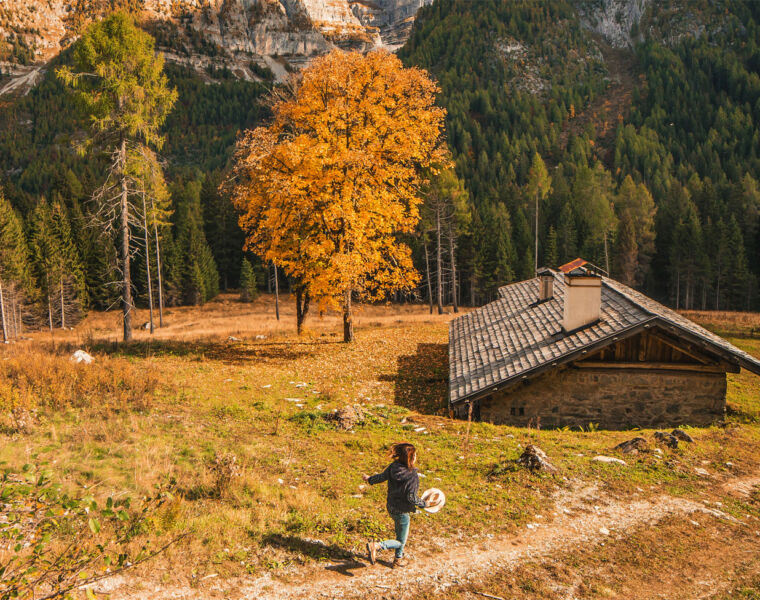 The Best Places to go Leaf-Peeping in Trentino, Italy this Autumn