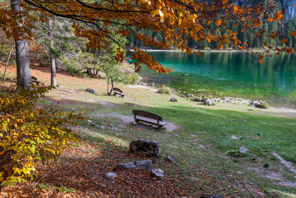 A bench by the lake in Lago di Tovel. Photograph taken by Diego Marini.