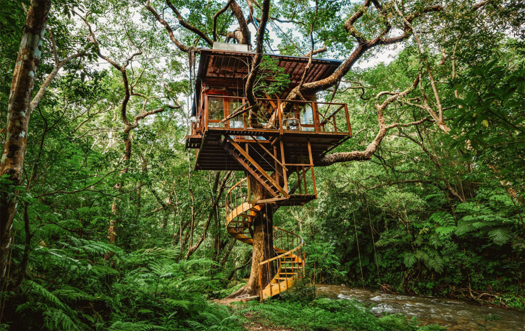 Experience 'Komorebi' at Treeful Treehouse on Okinawa Island in 2021