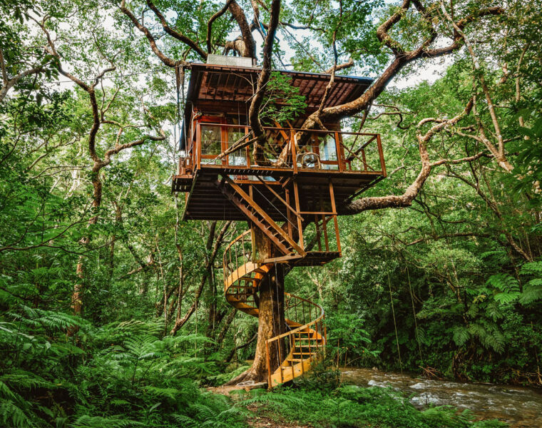 Experience 'Komorebi' at Treeful Treehouse on Okinawa Island in 2021