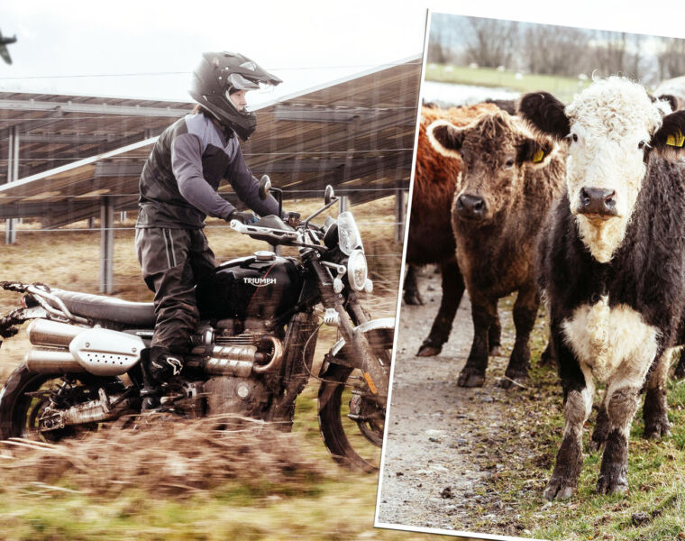 Have You 'Herd' About Triumph and Guy Martin's Great Escape?