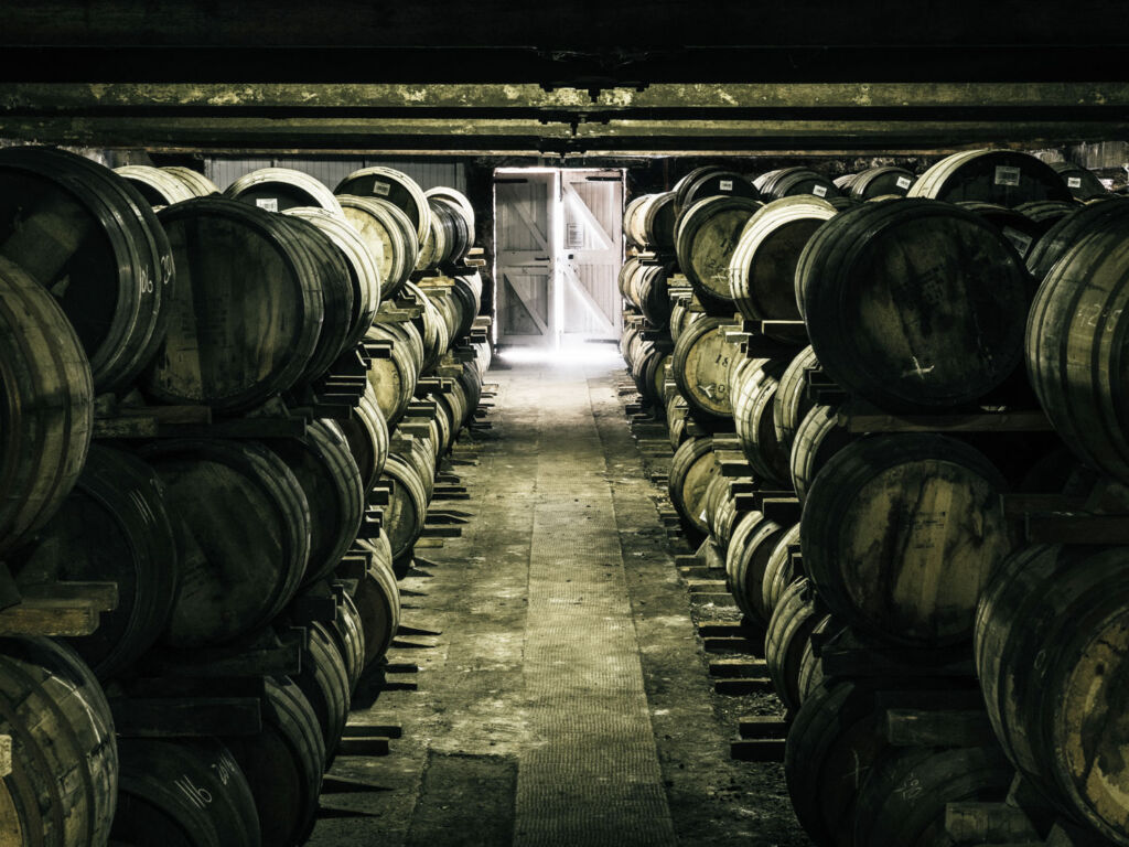 Whisky barrels in the Fettercairn Distillery