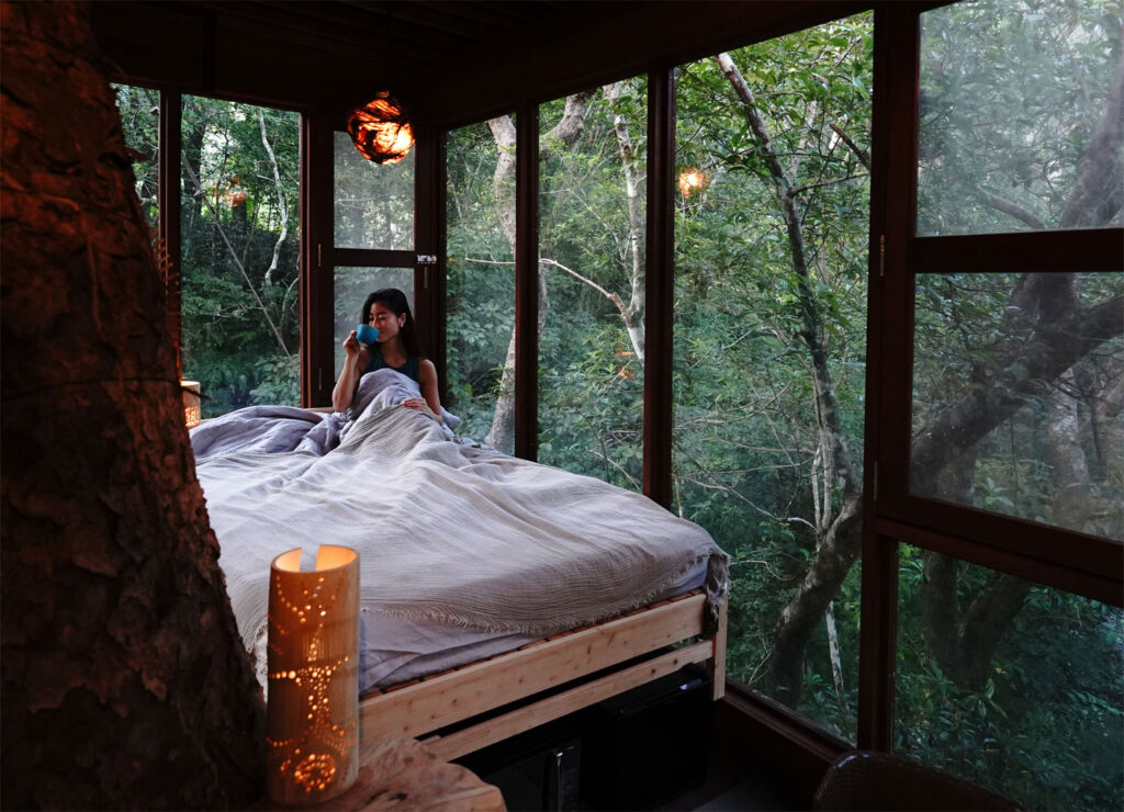 Woman relaxing in bed in one of the rooms at Treeful Treehouse