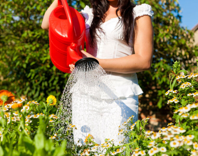 Improving your garden is a simple way to add value to your home