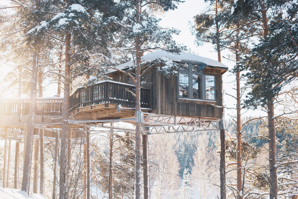 A floating cabin up in the trees at Naturbyn