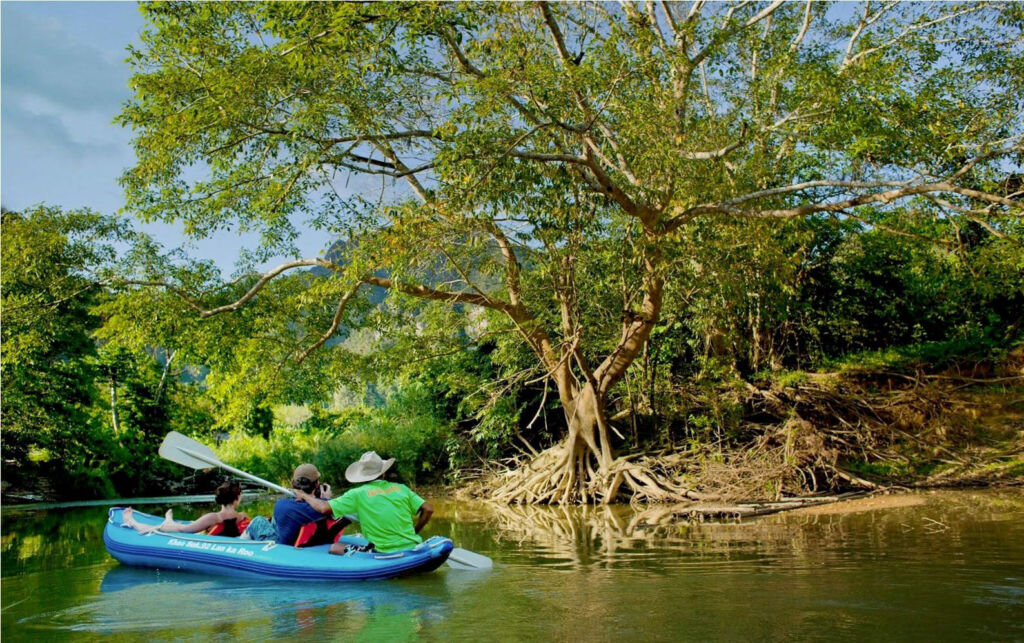 Exploring Thailands Mangrove by Canoe