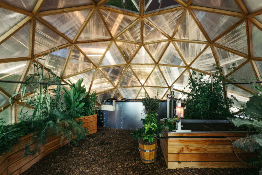 Vertical farming at the Rosenberg Future Park