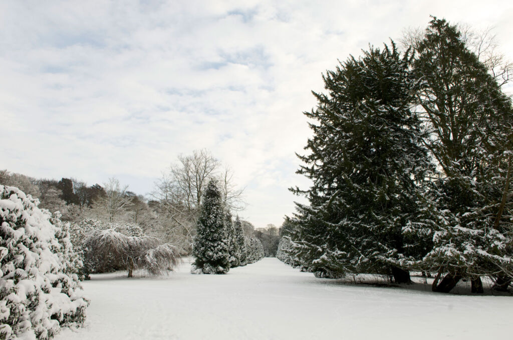The grounds at Ashridge House covered in snow