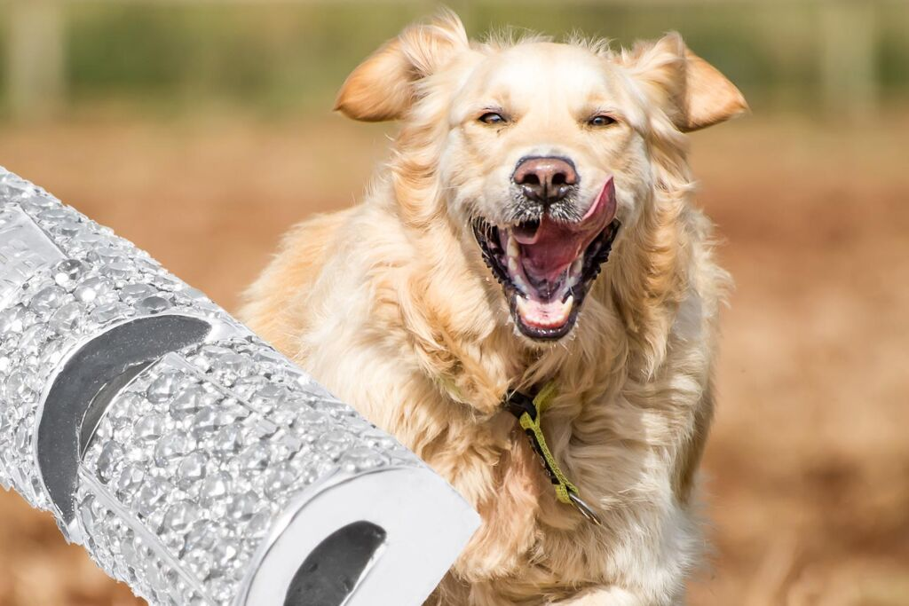 ACME Unveils an Incredible Dog Whistle Encrusted with 470 Diamonds
