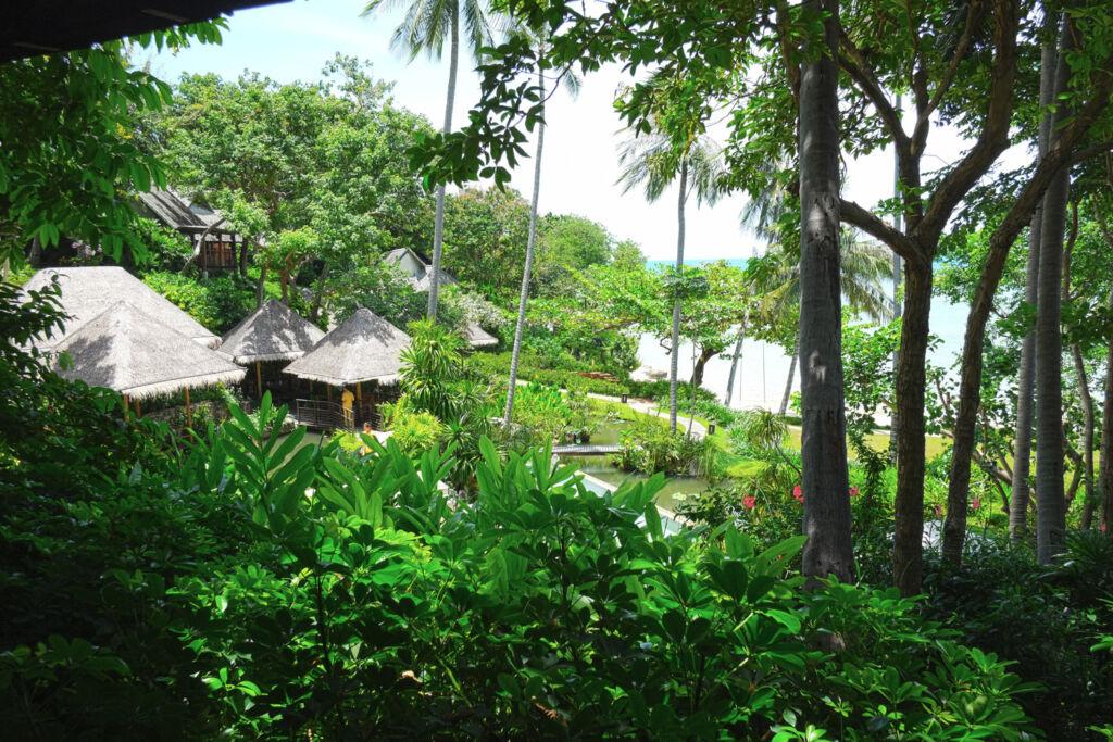 A sea view villa nestled in the jungle foliage