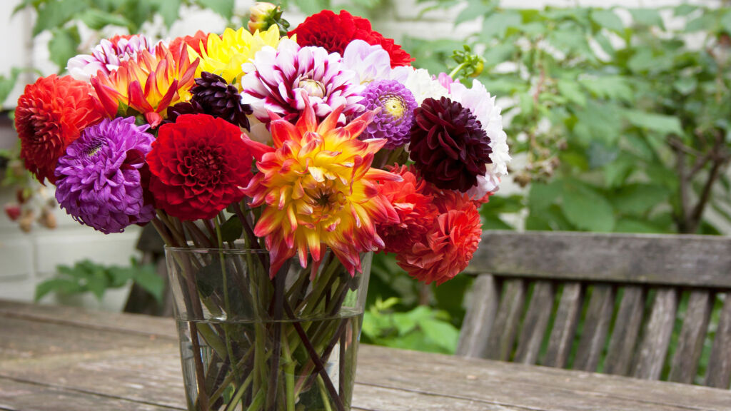 A colourful variety of flowers in a glass jar