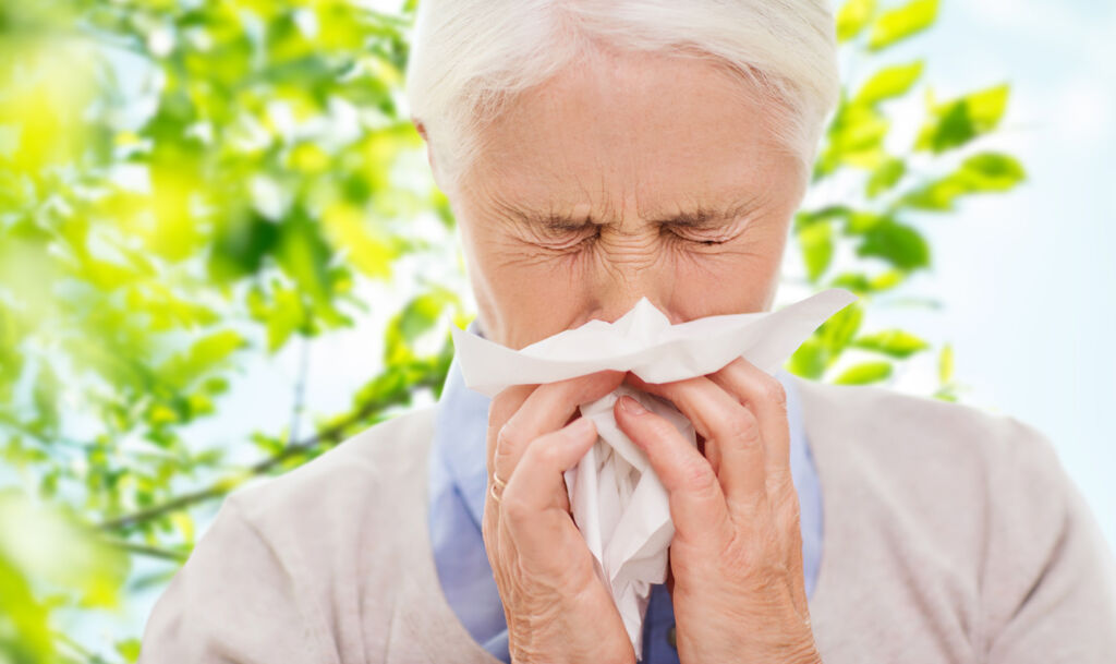 Spring is Here, and so is Hay Fever. How You Can Reduce its Effects?