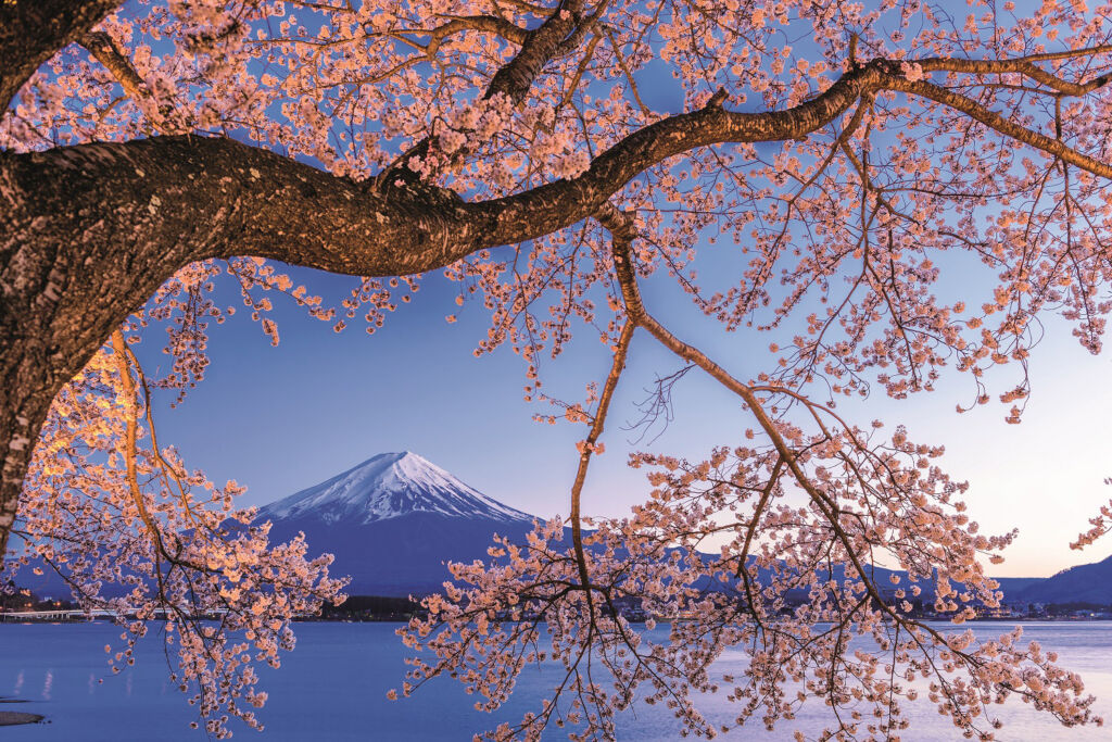 For the First Time, Scenic will Journey to Japan in 2021/2022