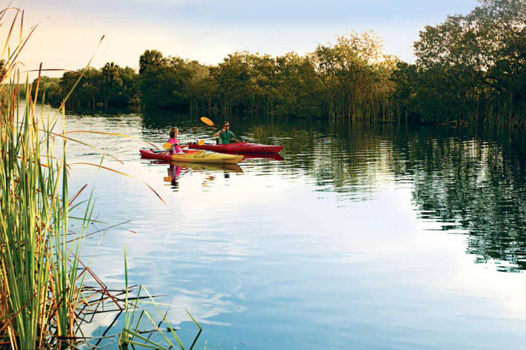 Kayaking is a fun and relaxing way to explore Florida's Paradise Coast