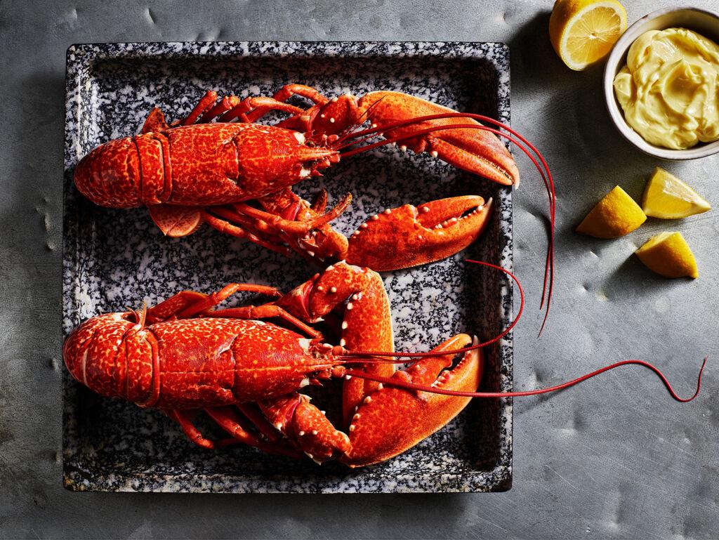 A beautiful fresh lobster dish