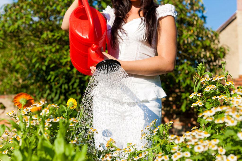 A woman watering plants in the garden