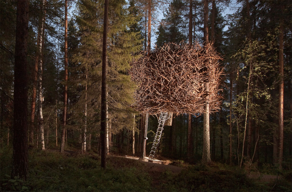 The exterior of the Birds Nest tree cabin in Swedish Lapland
