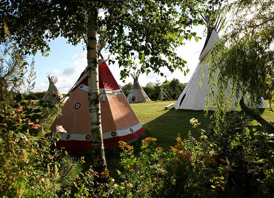Traditional wigwams at a campsite