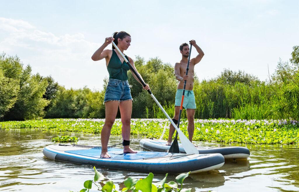 People enjoying some paddleboarding