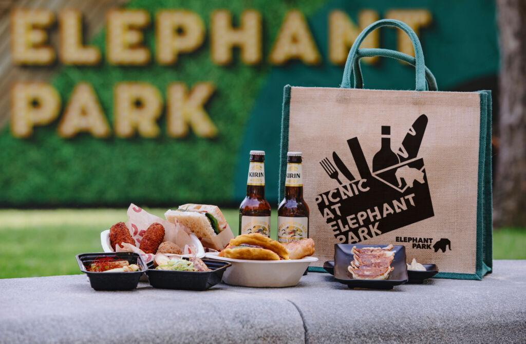 Picnic at Elephant Park tote with food