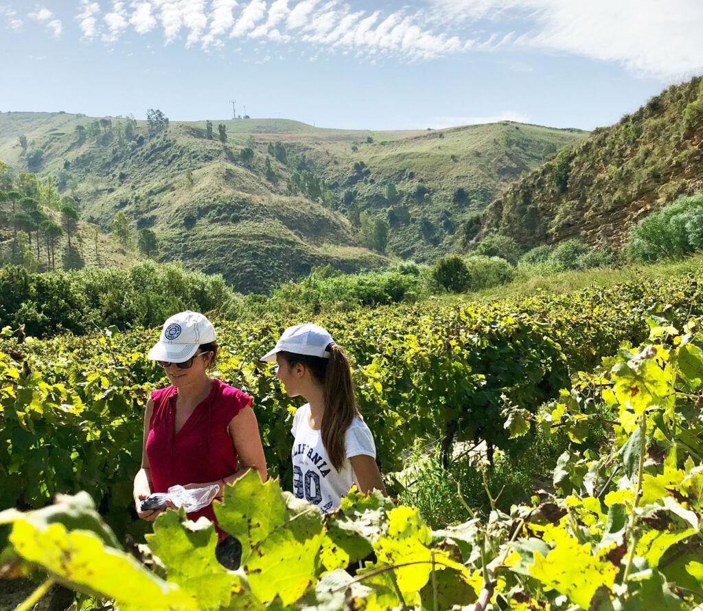 Two female members of the Tamburello family walking in their vineyard in Poggioreale