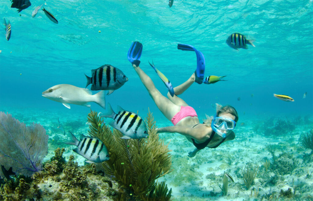 A woman snorkelling under the turquoise blue water among a wide variety of exotic fish