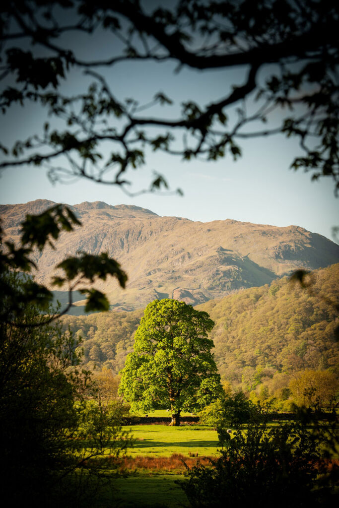 The beautiful hill in the Lake District on a bright sunny day