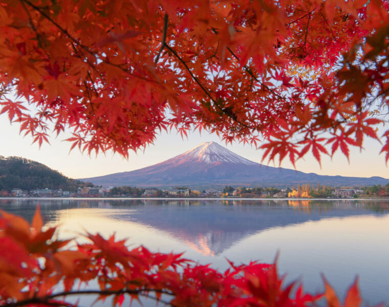 The 2021 Guide to Shizuoka in Japan - New Accommodation and Experiences 12