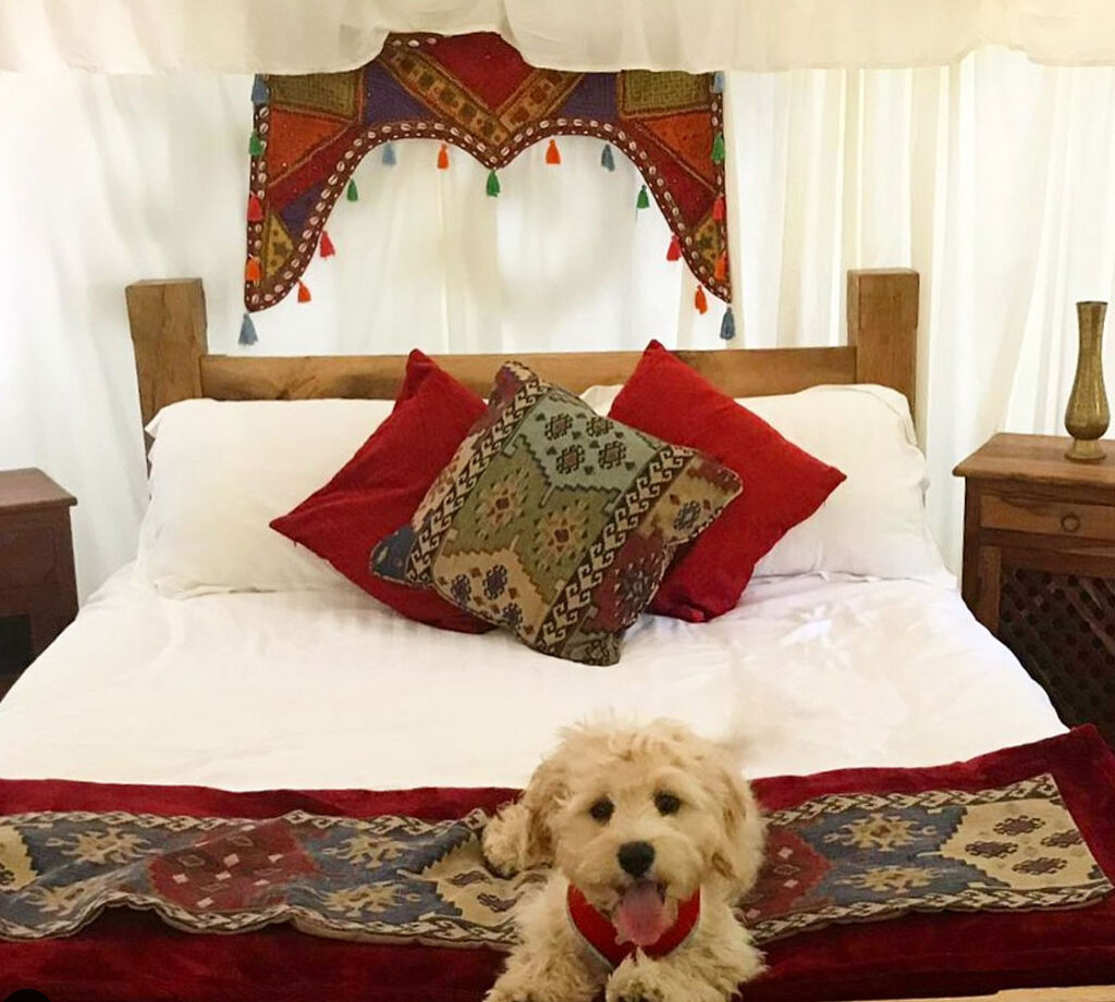 The bed inside one of the yurts