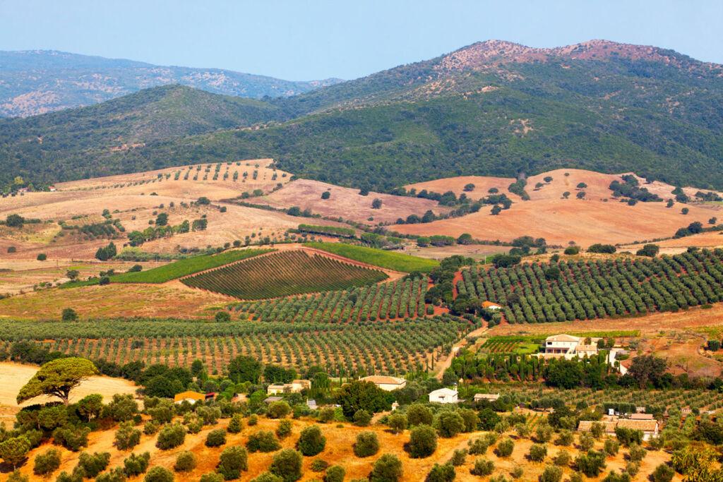 The Villa Pinciana Estate and Vineyards