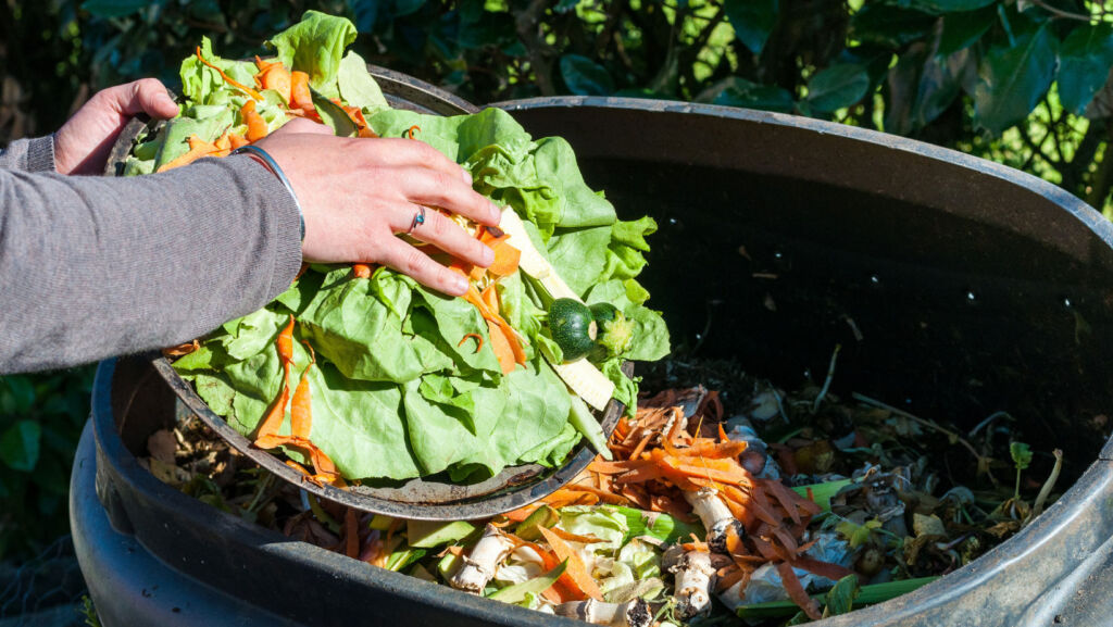 A person putting leftover vegetables into a compost bin