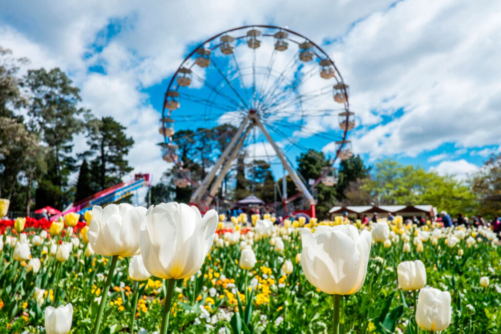 The amazing flowers on display at the Floriade Expo
