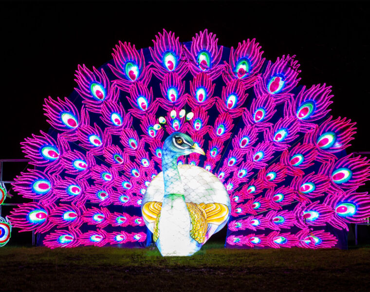 Lightopia London will Bring Some Extra Wow and Sparkle to Christmas